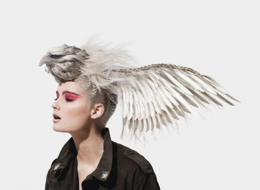 Bird haircut