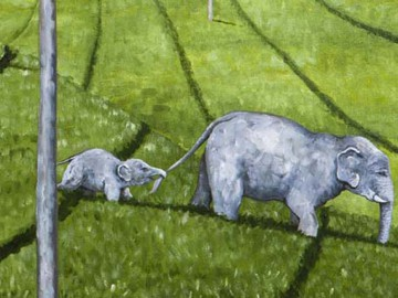 race-elephants3