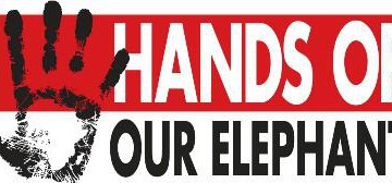 hands of our elephants loggo