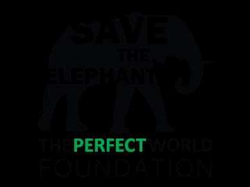 elephant_black