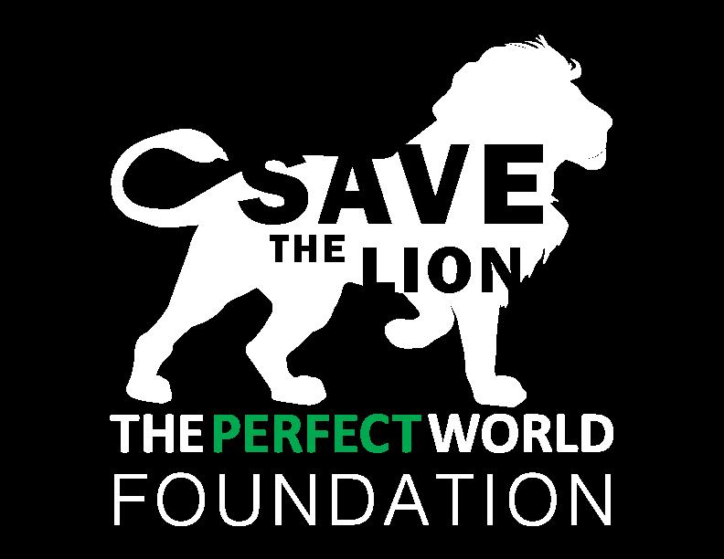 lion_white