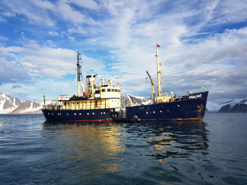 MS Malmî 2016 photo Johannes Malmlund